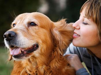 Hunde und Menschen verstehen sich gut.